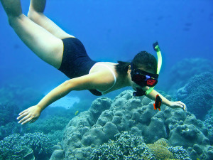 Snorkeling with clown fish at Apo Island, Philippines