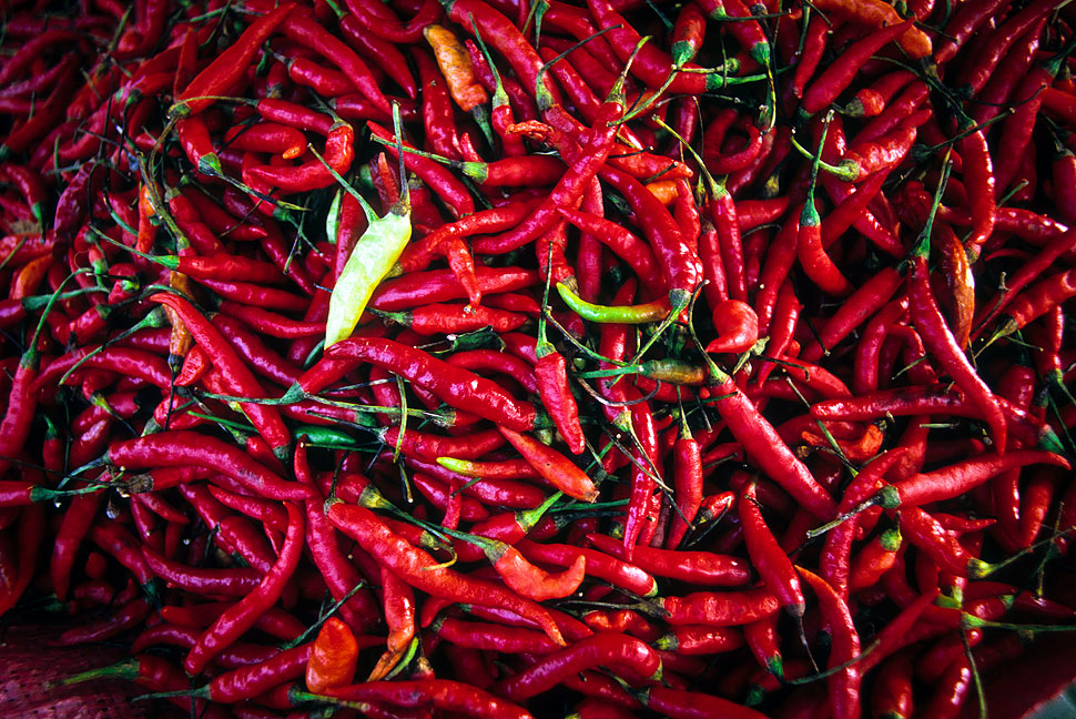 Red Hot Chili Peppers from the Market in Luang Prabang, Laos