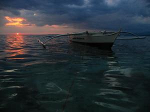 Night Dive at Apo Island, Philippines