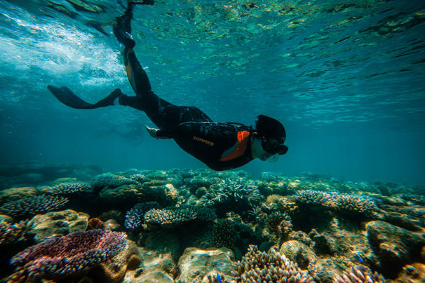 Snorkeling the Beautiful Coral Reefs of Palawan's UNESCO Reef