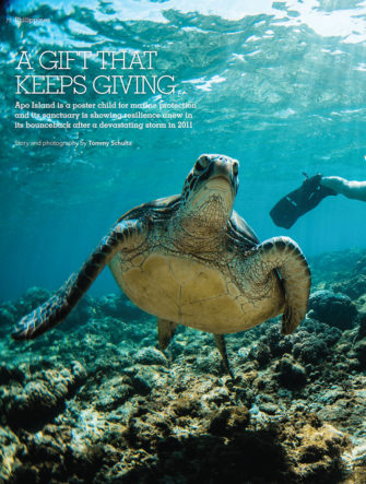 Apo Island Conservation Feature | Action Asia Magazine