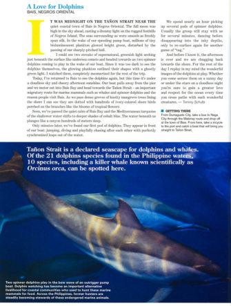 Dolphins at Night - Travel Story | Philippine Airlines | Mabuhay Magazine | Tañon Strait