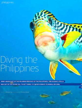 Diving the Philippines - Scuba Trip Guide | Qatar Airways | Oryx
