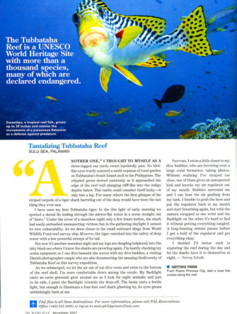 Swimming with Tiger Sharks in Tubbatha | Philippine Airlines | Mabuhay Magazine
