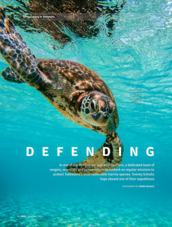 Tubbataha Marine Biology - Sea Turtle Tagging Expedition | Cebu Pacific Airlines | Smile Magazine