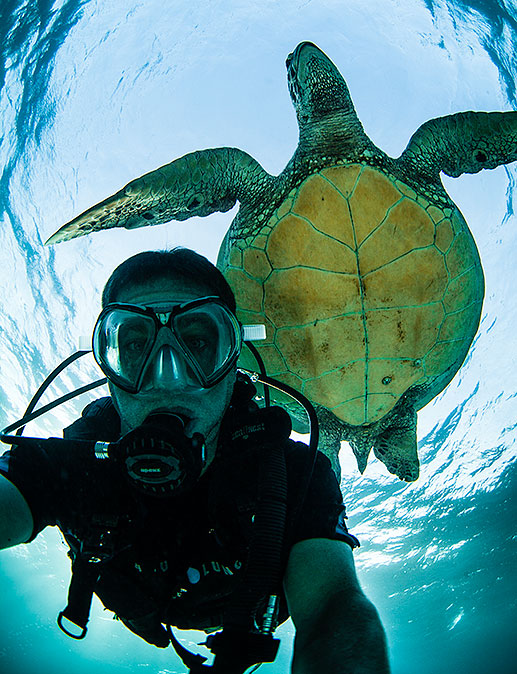 Philippines scuba diving trip with rare and endangered sea turtles
