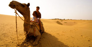 Camel trekking the Great Thar Desert at the India Pakistan border