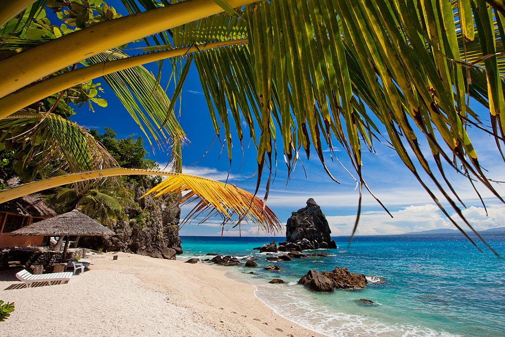 Apo Island Beach Resort 9 Jpg