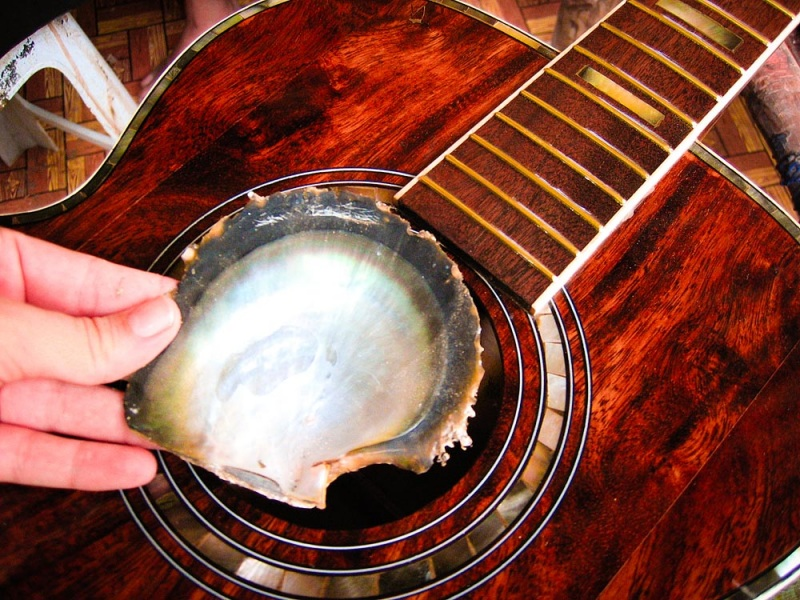 Black Pearl Guitar Inlay