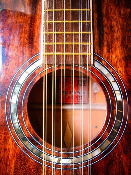 Difference between Six string and Twelve String Guitar