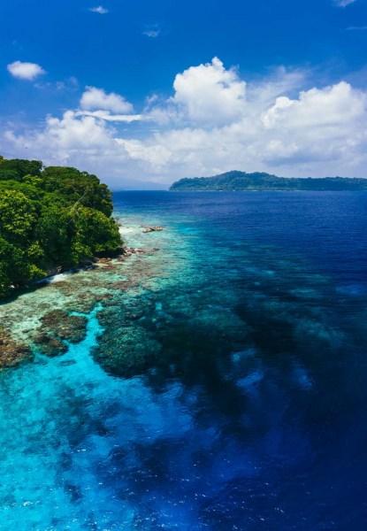 South Pacific Dreams