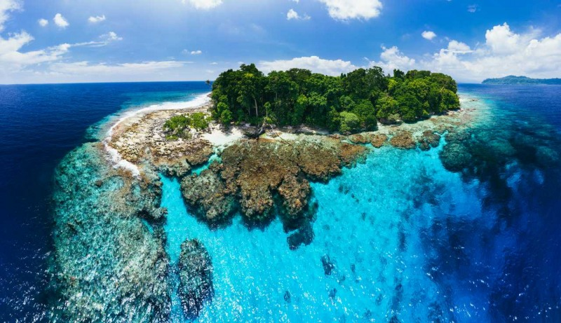 South Pacific Paradise