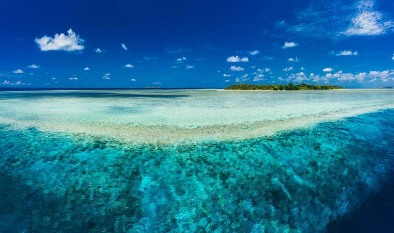 Spice Island Reef