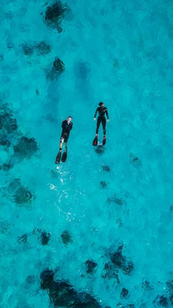 Coral Triangle Snorkeling