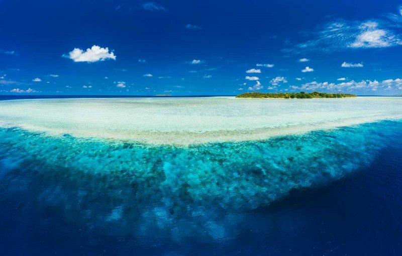 Coral Panorama
