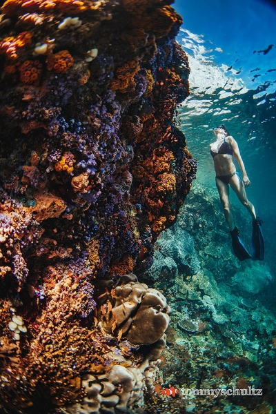 Freediving Islands East of Flores: Underwater Photo Gallery