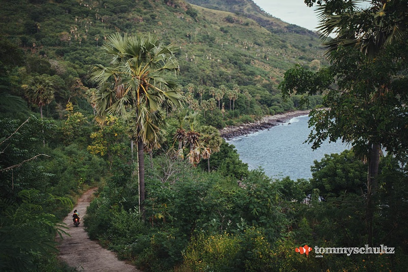 Island Life East of Flores: Exploring the Cultures from Alor and Beyond