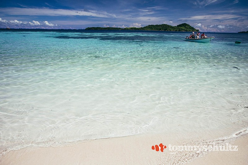 Raja Ampat Island Life: Landscapes and Peoples of Papua