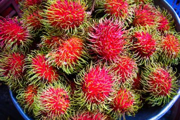 Bright red rambutans for sale in the Dumaguete Market