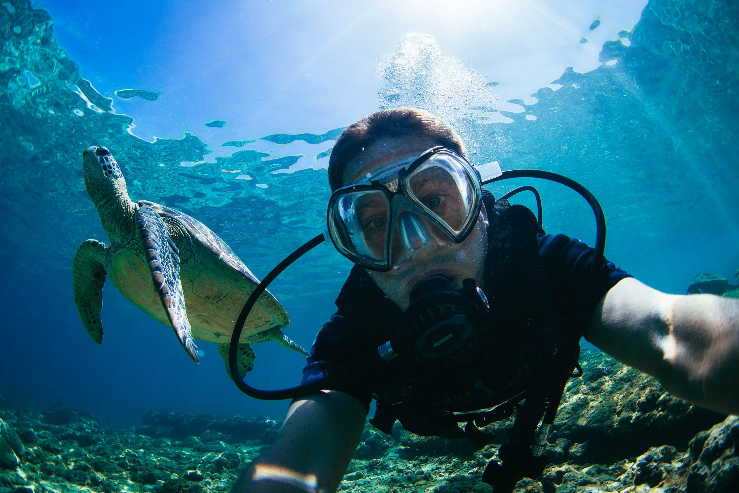 Diving with the sea turtles of Apo Island