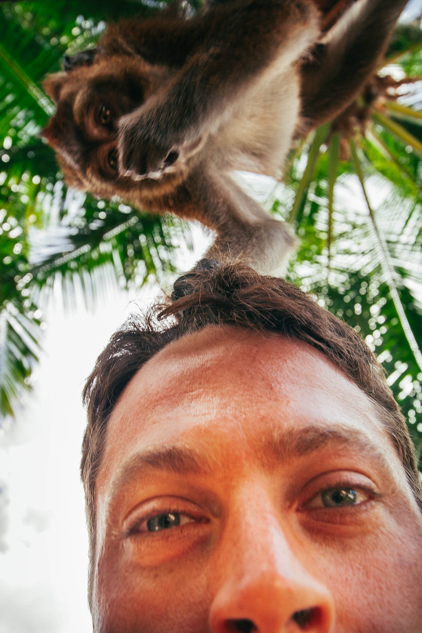 Making new friends in El Nido, Palawan