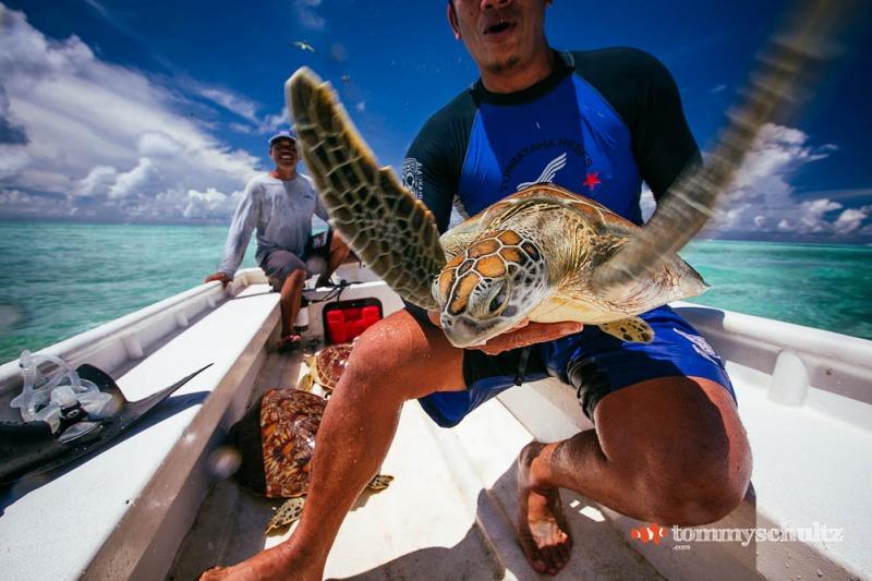 travel-underwater-surf-photography-2016-18
