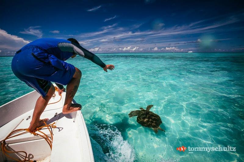 travel-underwater-surf-photography-2016-21