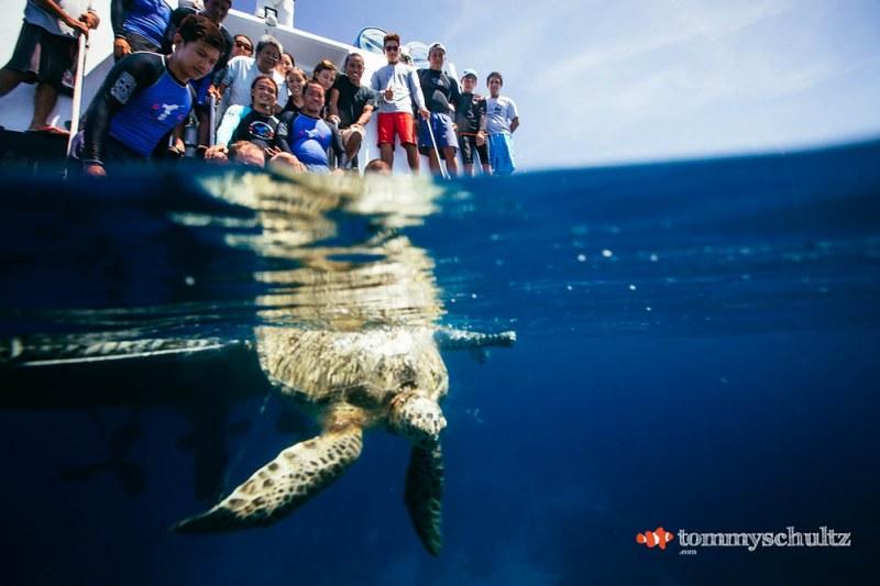 travel-underwater-surf-photography-2016-92
